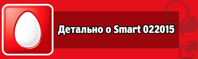 Детально о Smart 022015